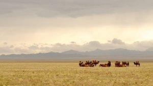 Les steppes mongoles, où le rêve rejoint la réalité